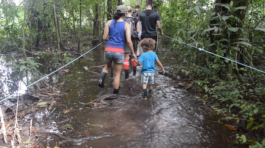Makai and his mom hiking through the swamps of Tortuguero, Costa Rica
