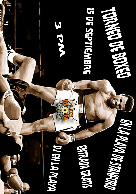 torneo boxeo