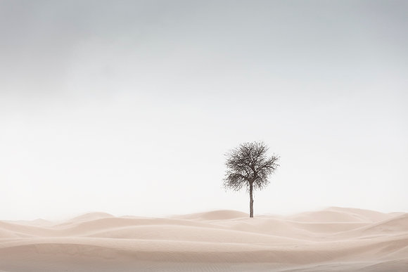 Anthony Lamb | Sand Blasted