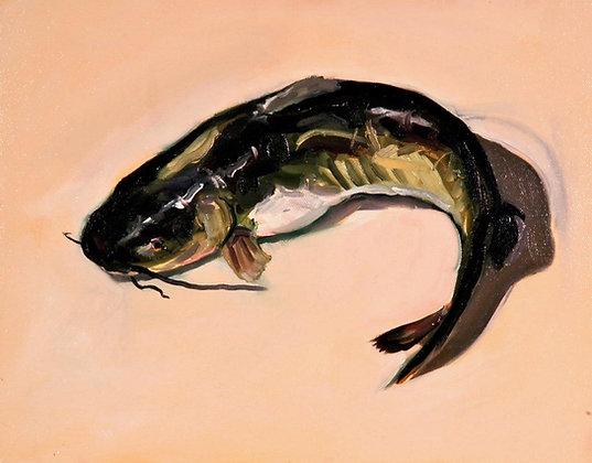 Mark Pacheco | Catfish