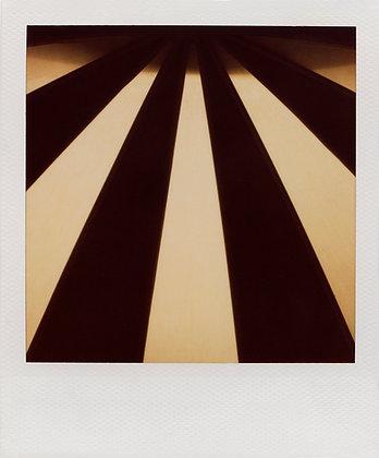 Patrick Sansone | #85 | Ed. 1/10