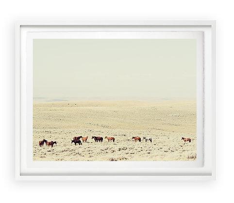 Christine Flynn | Wild Horses