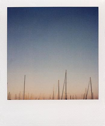 Patrick Sansone   #23   Ed. 1/10