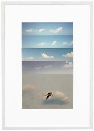 Andres Galeano | Vertical Skies #27