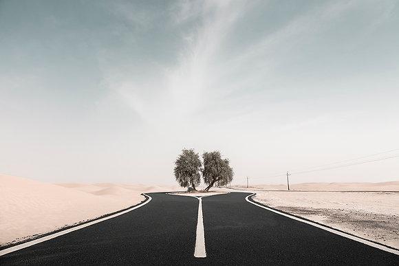Anthony Lamb   Desert Road