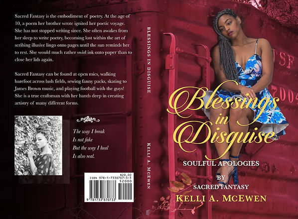 Blessings in Disguise book cover.jpg