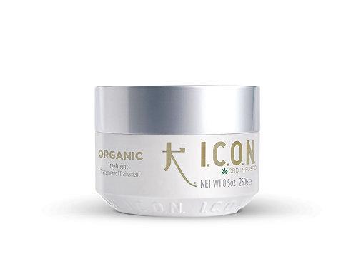 Organic Treatment Mask