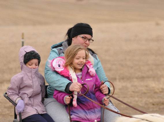 Cart Rides