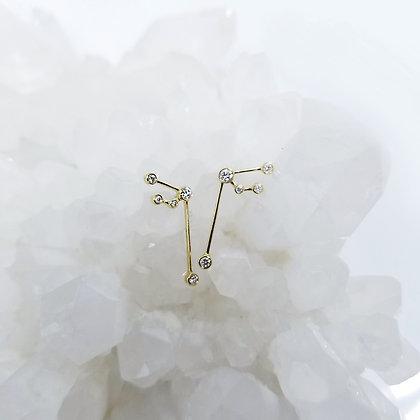 Aquarius Zodiac Earrings