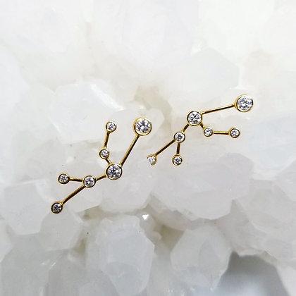 Taurus Zodiac Earrings