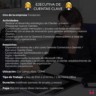 Mitz - Ejecutiva Cuentas Clave.png