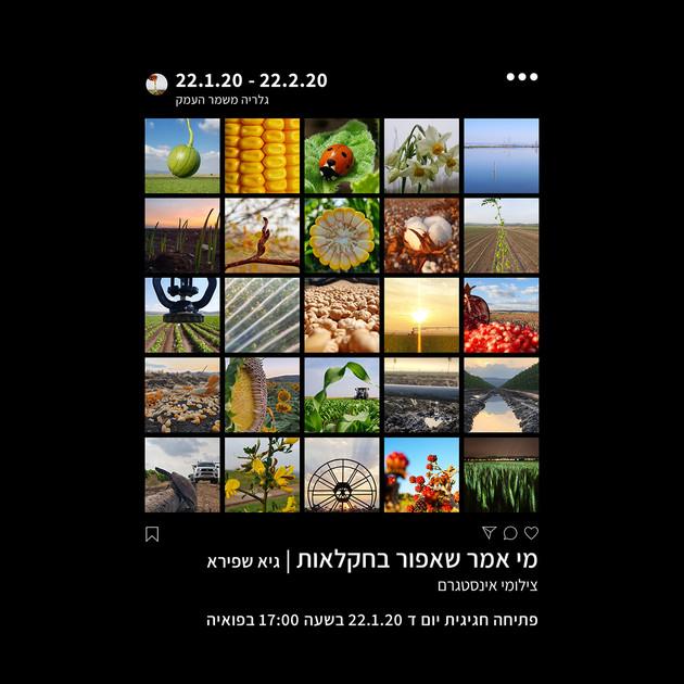 ׳מי אמר שאפור בחקלאות׳ תערוכת צילומי אינסטגרם של גיא שפירא