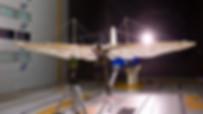 DLR - Lilienthal - Fliegekunst