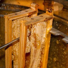 What should you be paying for honey?
