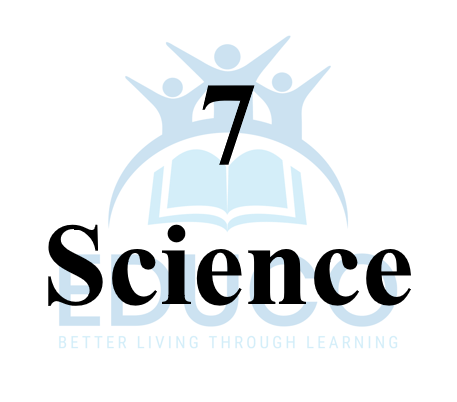 Grade 7 Science Review Booklets