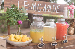 lemonadestandcloseup