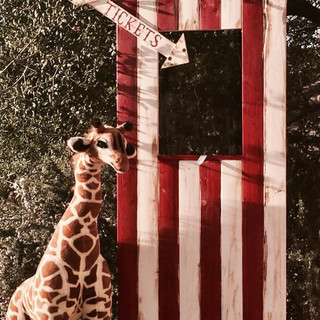 Giraffe (3 available) ($15 each) Adult Ticket Booth Photo Prop ($20)