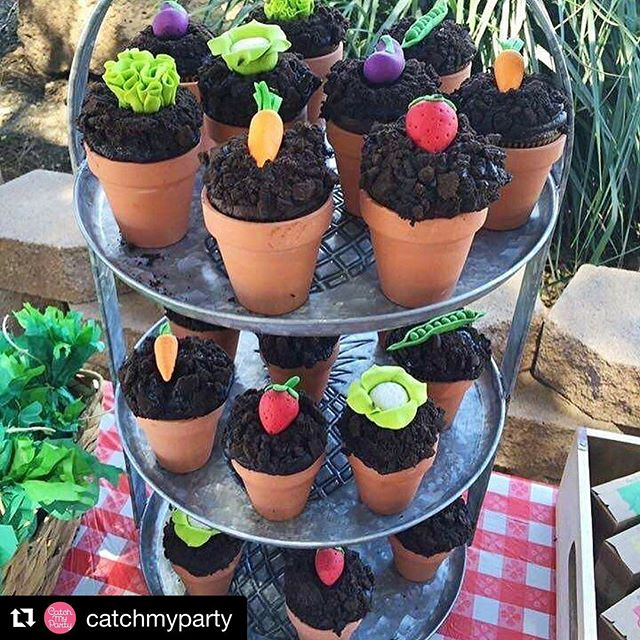 #Repost _catchmyparty with _repostapp_・・・_What a darling 'Farmer's Market' birthday party from _mysw