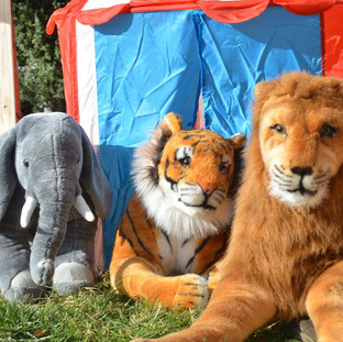 Elephant ($10) Tiger ($15) Lion ($15) Circus Tent ($10)