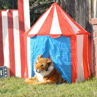 Circus Tent ($10)  Tiger ($15)