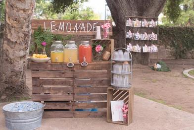 Lemonade Stand Setup