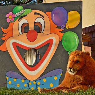 Clown Bean Bag Toss Game ($20)  Lion ($15)