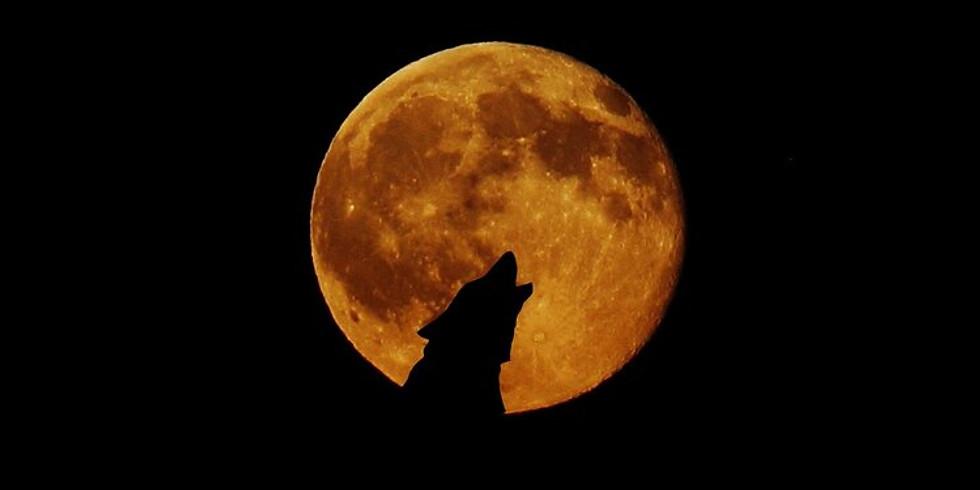Lunar Eclipse Breathwork and Sound Immersion