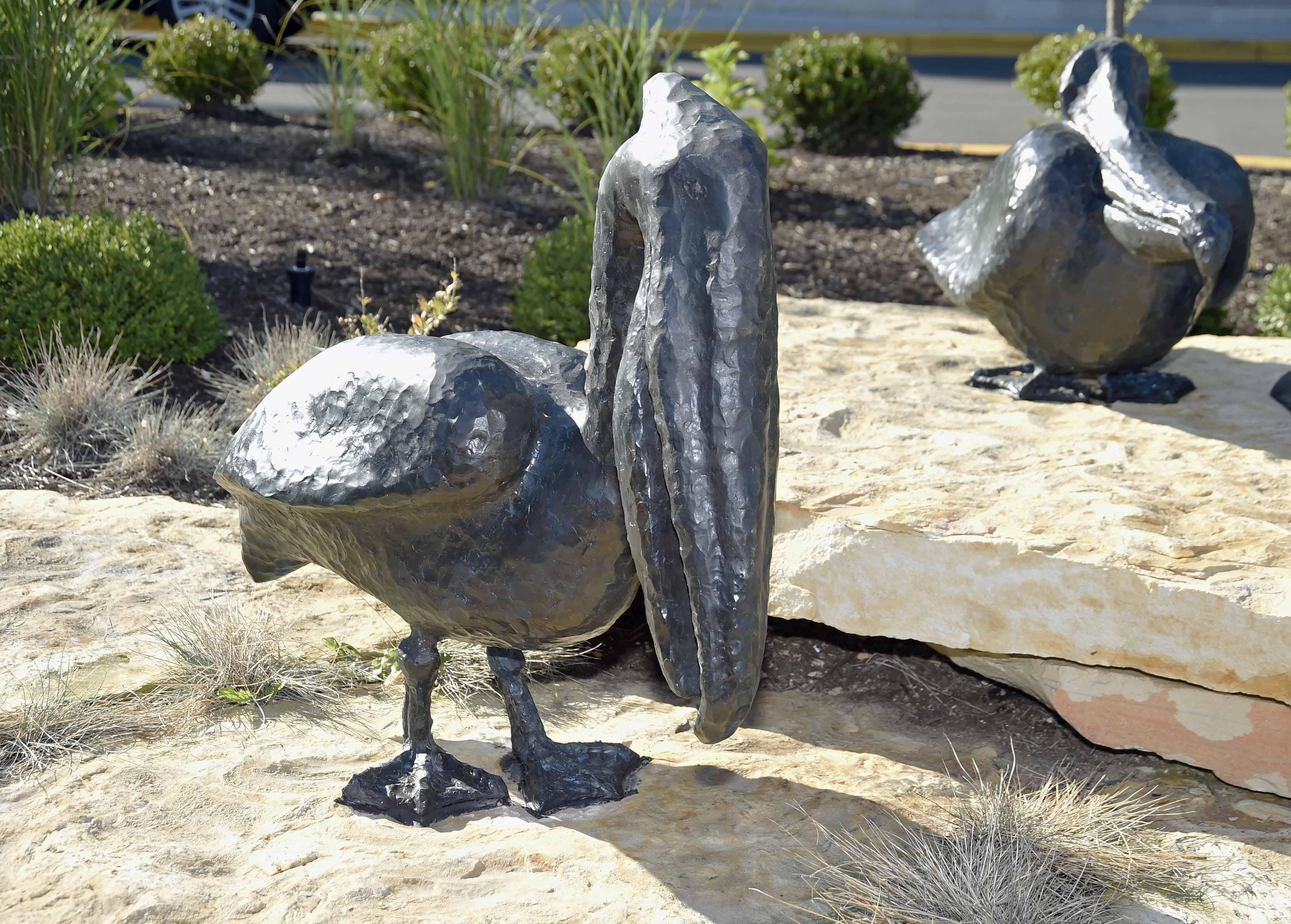 Cast Bronze Pelicans