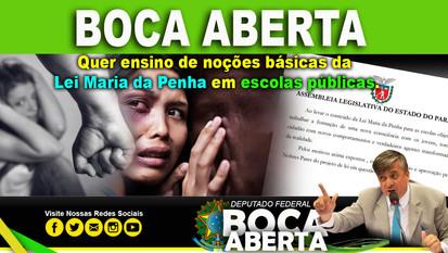 Boca Aberta quer ensino de noções básicas da Lei Maria da Penha em escolas públicas.