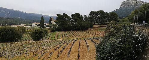 domaine paternel vin cassis calanque provence
