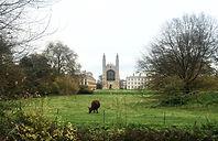 king's college chapel, made in trip, nature, vue superbe du cam, blog voyage e découverte