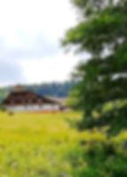 Gengenbach Allemagne forêt noire ferm