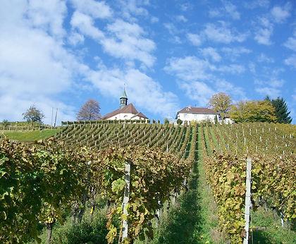 Gengenbach Allemagne chapelle saint jakob vigne