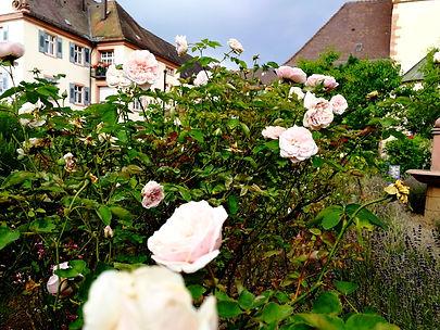 Gengenbach Allemagne église sainte marie jardin