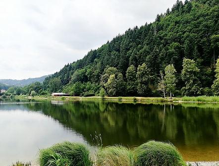 Gengenbach Allemagne forêt noire étang