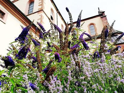 Gengenbach Allemagne église sainte marie extérieur jardin