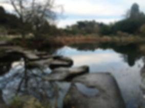 Jardin botanique cambridge angleterre