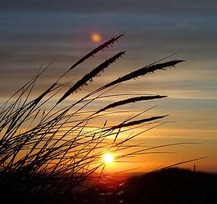 Fjord danemark coucher de soleil mer du nord paysage danois