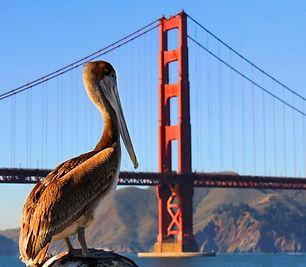 San Francisco Golden Gate Bridge est