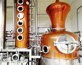 Gengenbach Allemagne distillerie wild