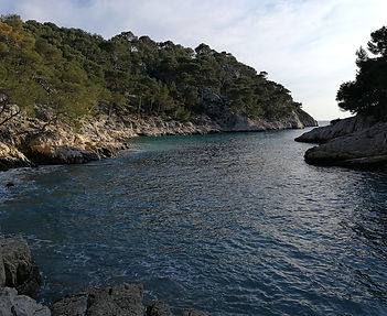 cassis calanque port pin provence
