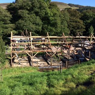 Timber frame for Big Marv's cabin
