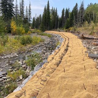Bioengineered Streambank Stabilization and Fish Habitat Restoration