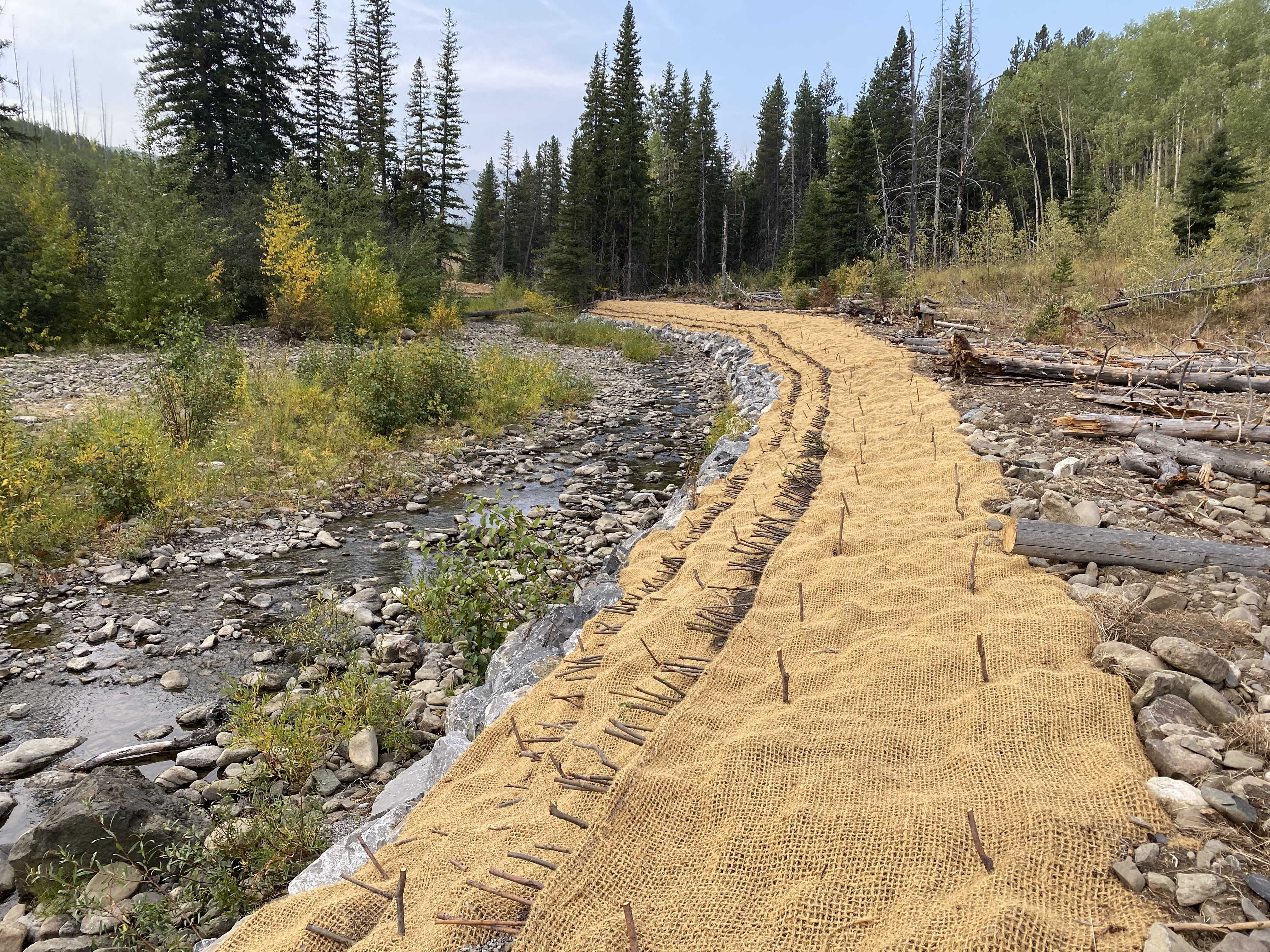 Completed Vegetated Geogrid with Riprap Toe