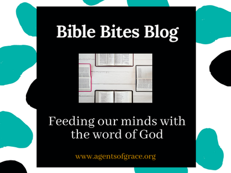 Introduction to Bible Bites Blog