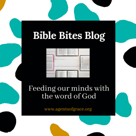 Introduction to Bible Bites Blog