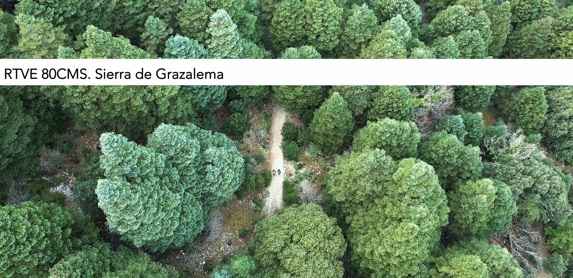 Sierra de Gazalema