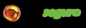 Logo_PagSeguro-300x98.png