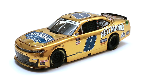 Dale Earnhardt Jr. 2020 Hellmann's Color Chrome 1/24