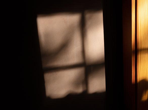 morning-light-15.jpg